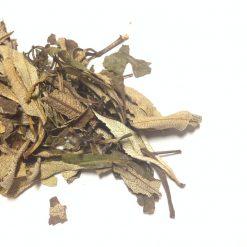 Yerba Santa Leaf